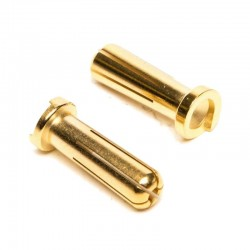5mm Gold Connector Low profile 2
