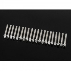 Rc4wd Miniature Scale Hex Bolts (M2 X 12mm) (Silver)