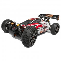 Trimmed/Painted Trophy Buggy Flux RTR Body