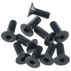 Flat Head Screw 3x8mm (10)