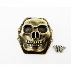 Metal Skull Ar60 Diff Cover (Antique Gold) - Yeti Wraith Ax10